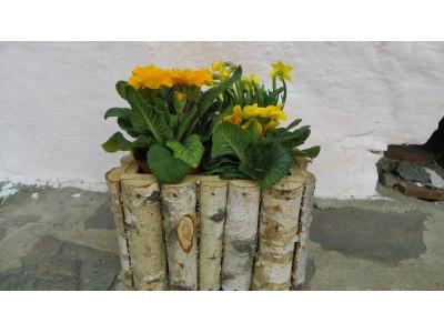 Květník z břízy 25x25 cm
