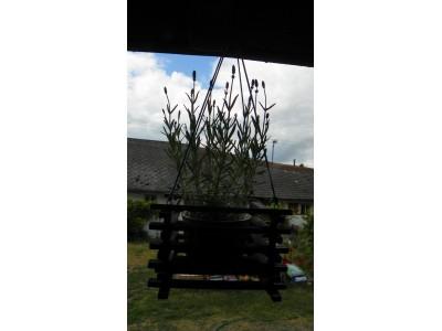 Závěs na květiny 16x16cm.